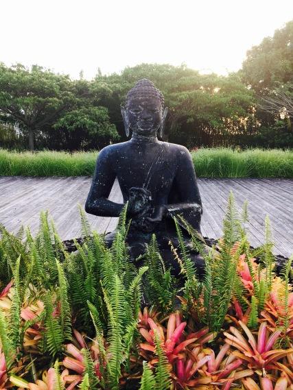 BUDDHISMUS MEETS MAUI, HAWAII